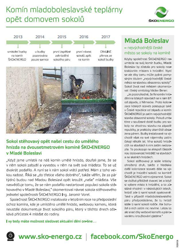 Komín mladoboleslavské teplárny opět domovem sokolů